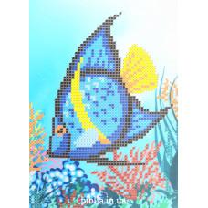 """Набір для вишивання бісером """"Риба"""" (604)"""