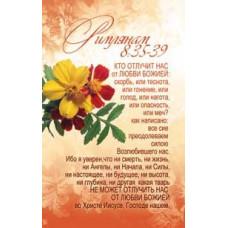 Наклейка: Кто отлучит нас от любви Божией... (S 36)